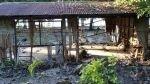 Sismo de 7,1 grados sacude de nuevo las Islas Salomón, en el Pacífico Sur - Noticias de terremoto formó isla