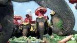 El turismo pone en peligro al elefante salvaje en Tailandia - Noticias de tala de árboles