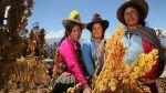 En la segunda quincena de junio se empezará a promover la dieta andina - Noticias de juan rheineck