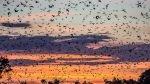 FOTOS: Diez maravillas de la ciencia a las que ir en vacaciones - Noticias de nube smith