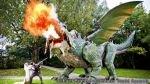 Récords Guinness 2014: el dragón que escupe fuego, el chivo patinetero y... - Noticias de animales habilidosos