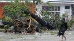 Tifón en Filipinas: reportan más de 100 muertos tras el paso del