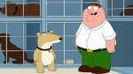 """Este es Vinny, el personaje que tomará lugar de Brian en """"Family Guy"""" [VIDEO] - Noticias de steve callaghan"""