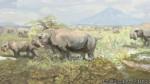 La letrina prehistórica más antigua del mundo fue hallada en Argentina - Noticias de lucas fiorelli