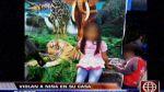 Niña de seis años fue violada durante un asalto en San Juan de Miraflores - Noticias de roberto huarhuachi