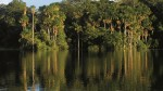 Viaje a Puerto Maldonado - Noticias de reservas naturales del manú