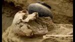 Tumbas prehispánicas halladas en tierras del proyecto Olmos - Noticias de cultura lambayeque
