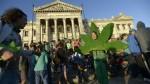 Uruguay: Extremarán protección para registro de marihuana - Noticias de junta nacional de drogas