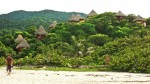 Caribe mágico: Recorre algunas de las bellas playas de Colombia - Noticias de fauna marina