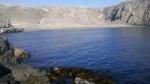 Caleta cercana a Matarani es invadida por maquinaria pesada - Noticias de lobos marinos