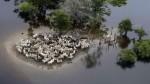 Bolivia: Ya son casi 47.000 los damnificados por las lluvias - Noticias de escasez de agua potable