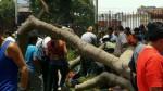 Parque Reducto: esposa de herido espera apoyo de Miraflores - Noticias de caida de arbol