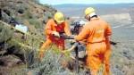 ¿Conviene eliminar los EIA para la exploración sísmica en Perú? - Noticias de fauna marina