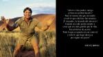 """""""El Cazador de cocodrilos"""": 10 lecciones de Steve Irwin - Noticias de steve irwin cazador de cocodrilos"""