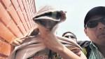 Crimen en La Molina: hija habría planeado matar a su madre - Noticias de padre abusa de hija
