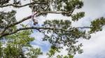 El Amazonas, escenario ideal para campeón mundial de clavados - Noticias de orlando duque