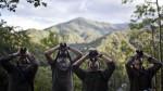 Juego de trinos: el avistamiento de aves en el Manu - Noticias de otorongos