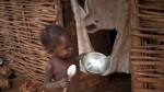 Haití: Sequía causa hambruna en la nación más pobre de América - Noticias de tala