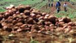 Invertirán S/.2.000 mlls. en planta de fertilizantes en Piura - Noticias de gobierno regional de piura
