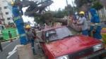 Miraflores: un árbol cayó en plena Av. Larco y dañó dos carros - Noticias de caida de arbol