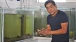 Conoce la práctica de Ikezukuri: pez y mariscos vivos a la mesa - Noticias de humberto sato