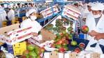 El despegue del agro ha impulsado el avance de los proveedores - Noticias de ulises quevedo