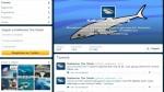 Katharine, un tiburón blanco es estrella de twitter - Noticias de miami