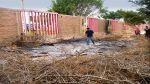 Talan y queman especies nativas en sede cultural - Noticias de tala de árboles