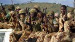 Tropas de Camerún mataron a 40 miembros del Boko Haram - Noticias de monjas secuestradas