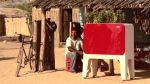 Conoce este refrigerador que funciona con ayuda de las plantas - Noticias de leo burnett